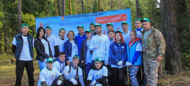 Лес Победы-2017